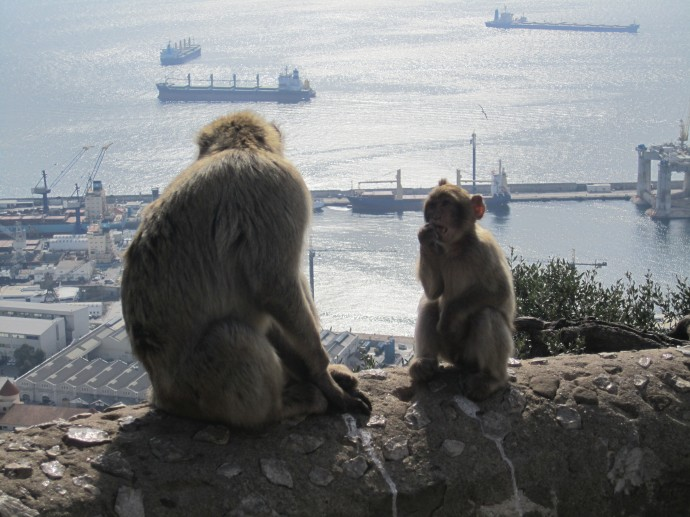 Beach, Sunbathing, Cadiz, Atlantic Ocean, Sevilla, Pizza, Promenade, Monkeys, Rock, Gibraltar